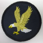 Eagle metallic thread on patch