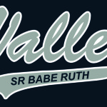 Valley Sr Babe Ruth artwork proof
