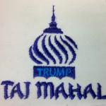 Taj Mahal sample